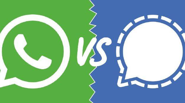 Signal et Telegram ne savent plus où donner de la tête
