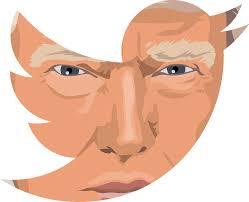 Twitter et Facebook suspendent les comptes de Donald Trump