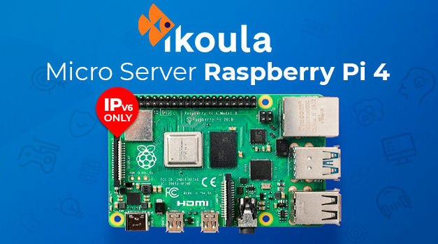 Ikoula muscle son offre Micro Server